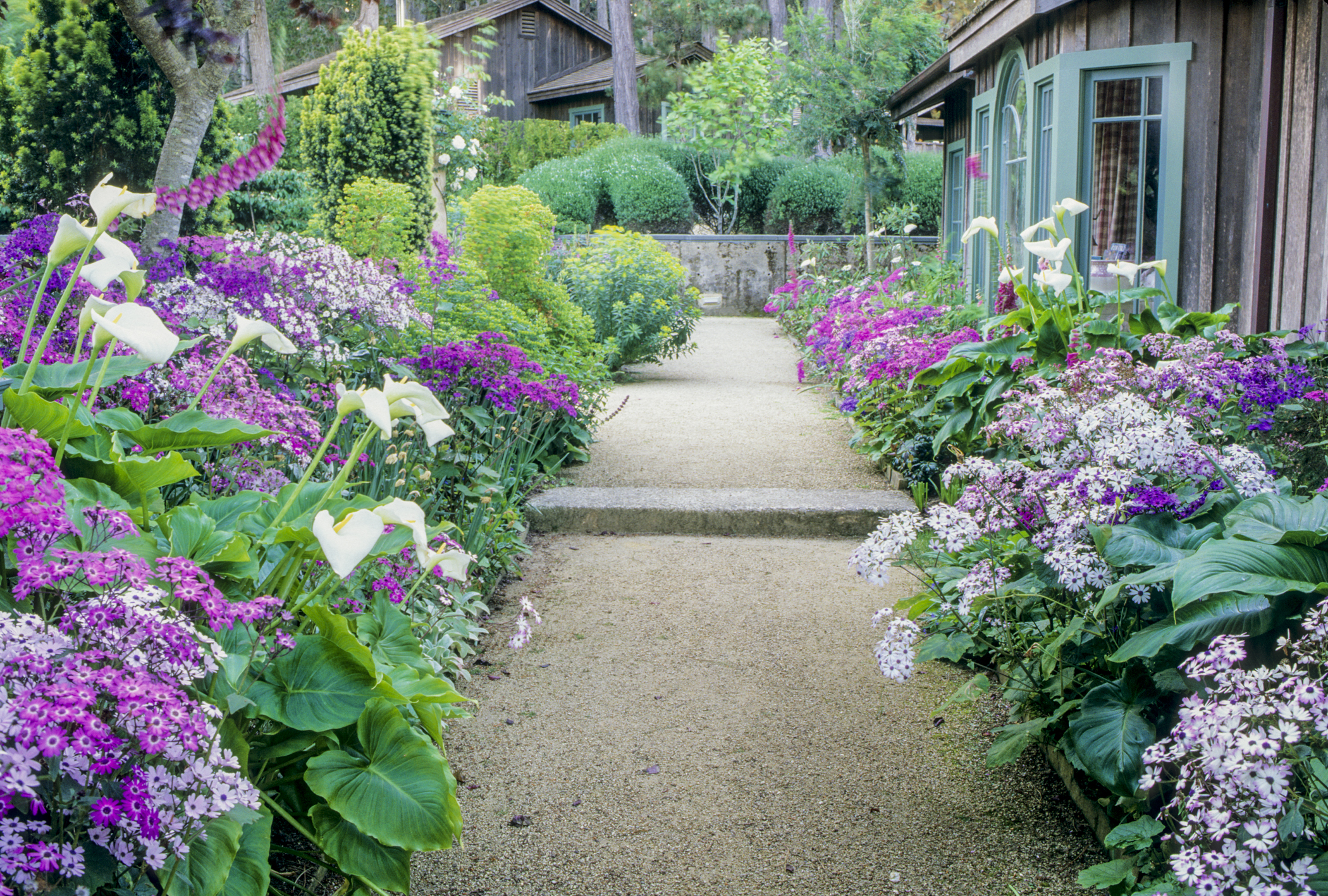 Color coordinate your house and garden for Garden design planting schemes
